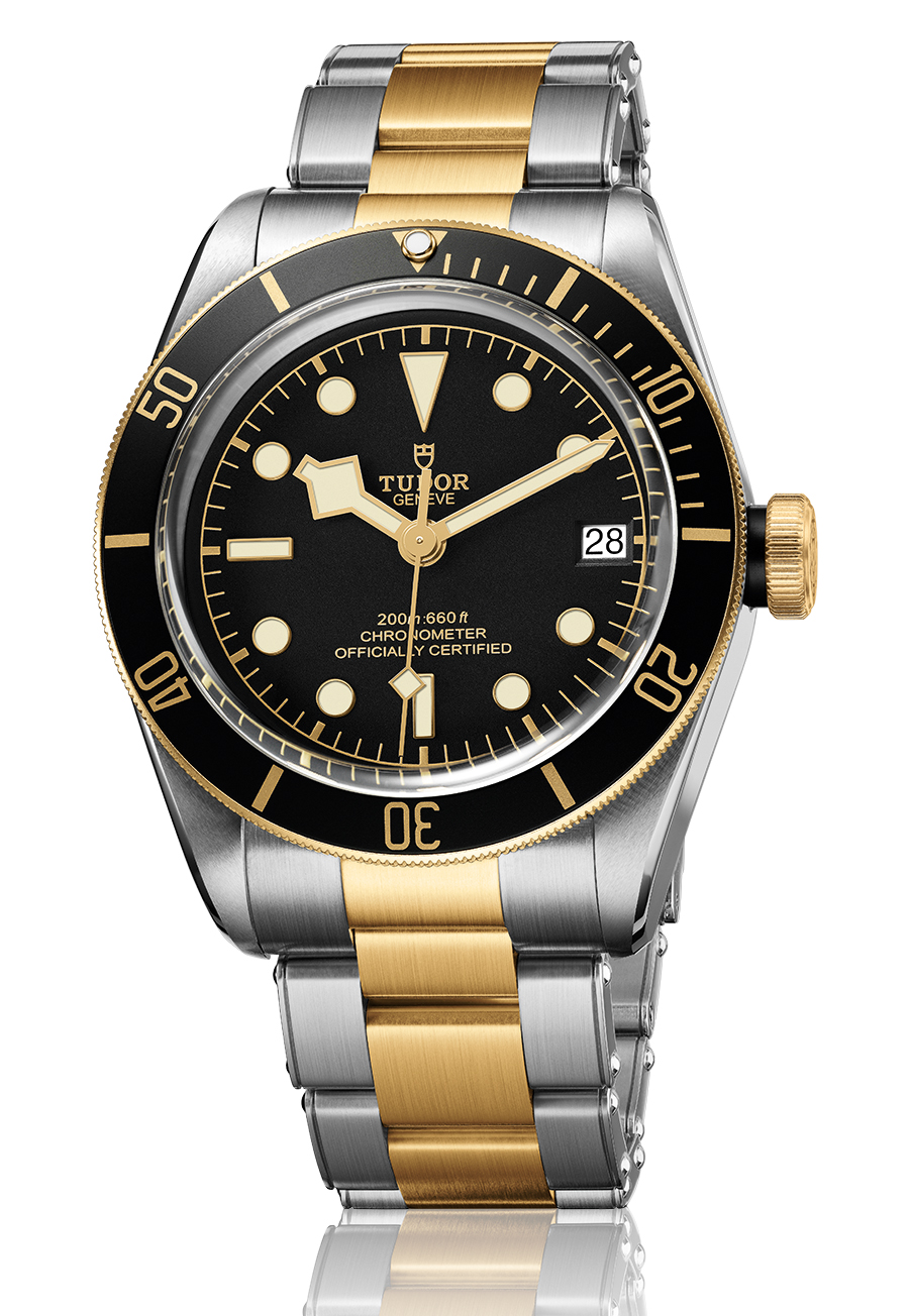 Tudor Black Bay S&G.