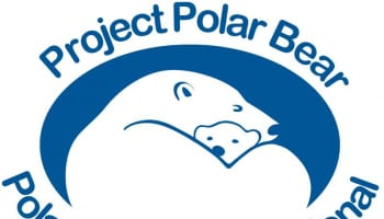 Polar Bears International